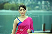Tamanna, latest, hot, navel, show, wallpapers
