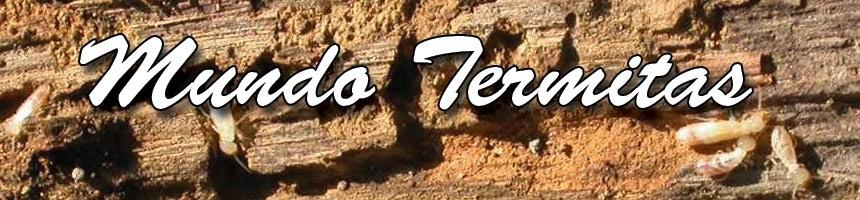 Prevención y control de Termitas o Comejenes
