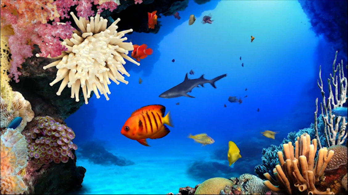 tvvip1.blogspot.comtvvip1: fondos de pantalla con movimiento, 3D, HD
