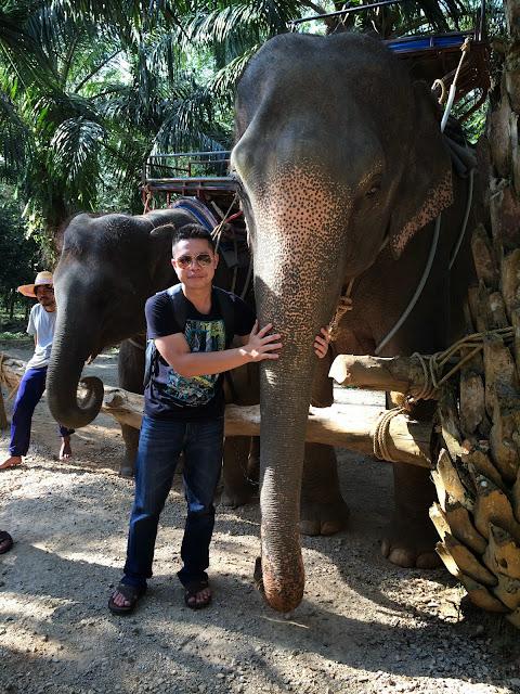 Krabi Thailand - Elephant Trekking