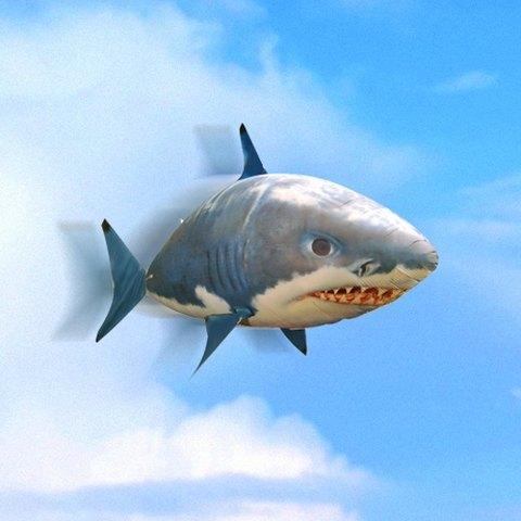 Lítající ryba žralok Air swimmer