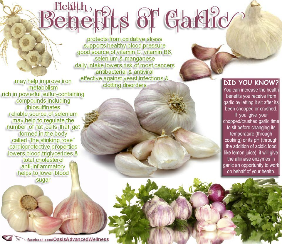 Rajesh Reviews Is Garlic Good For You