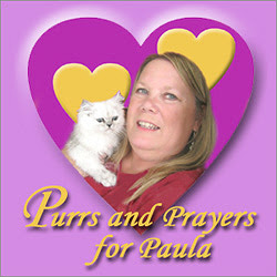 Purrs and Prayers for Paula