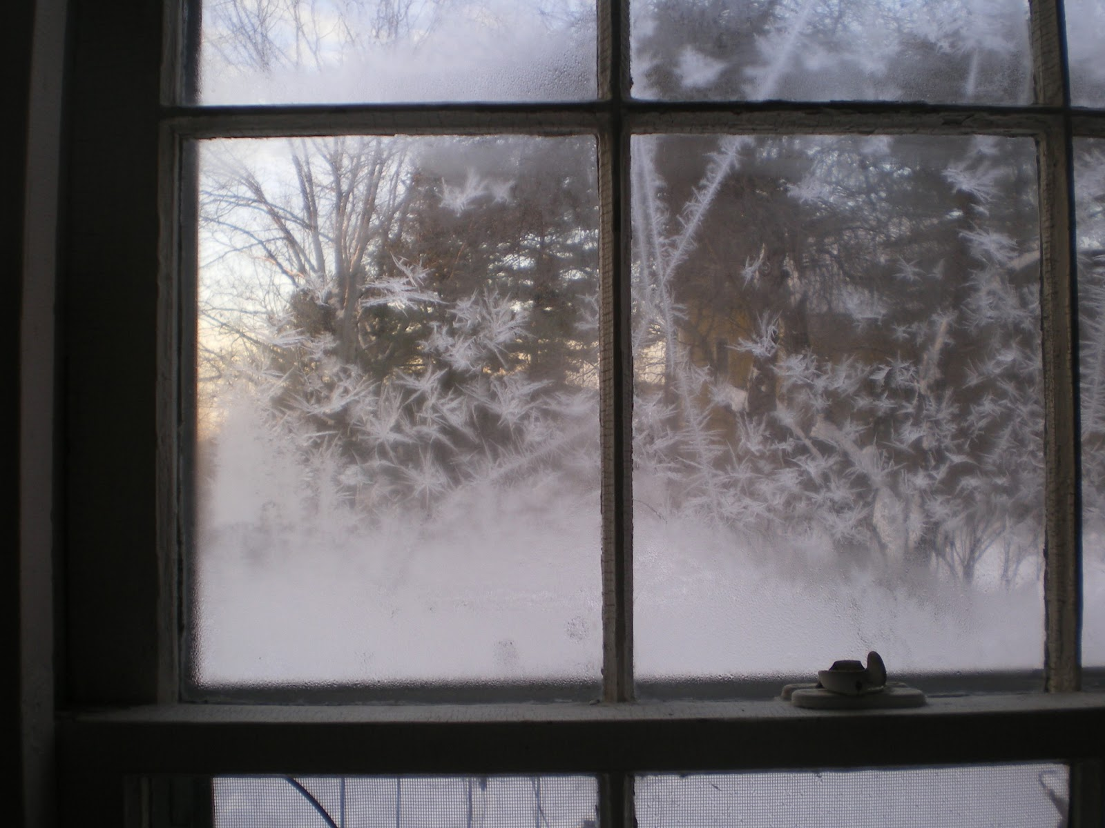 Captivating The Cold Air Has Knocked All The Moisture Out Of The Air And Itu0027s  Crystallized Onto The Windows In This Cold Room. Itu0027s Cold But, Oh So  Beautiful And I Just ...