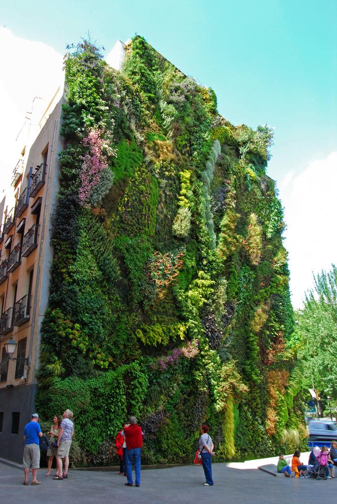 Verdigo jardines verticales verdaderas obras de arte for Jardines 15 madrid