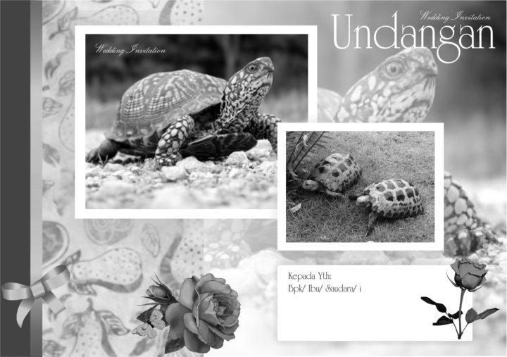 Undangan Eksklusif (Landscape) ~ CINDERAMATA BONEKA WISUDA