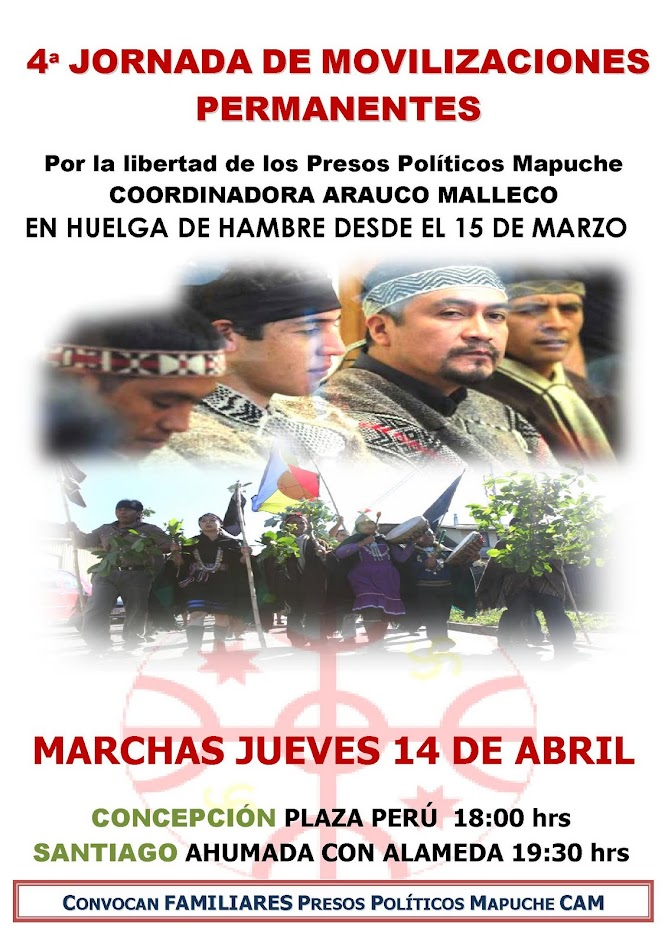 mapuches libertad