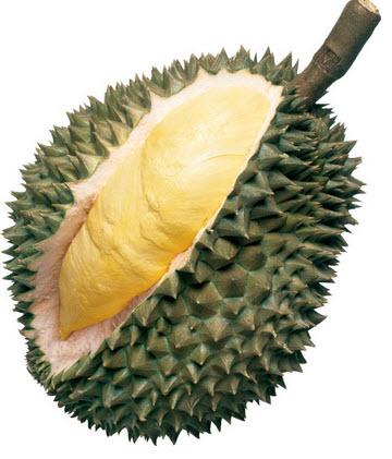 Cara memilih buah durian matang dan berkualitas baik - www.tabloidkuliner.com