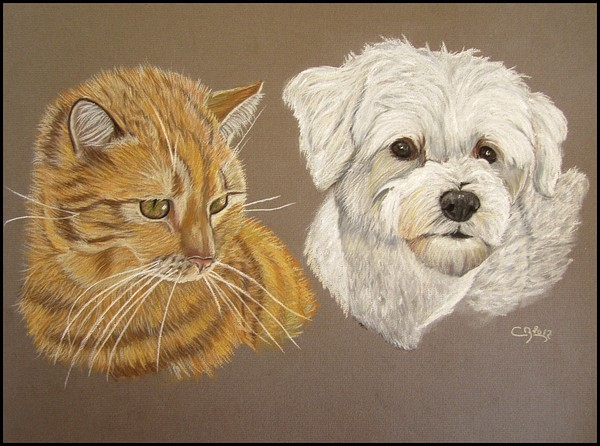 Portraits animaliers - Page 4 IMG_1230600