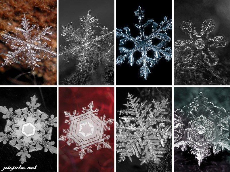 Снежинки в векторе