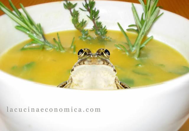 pellegrino artusi, zuppe varie anche di rane