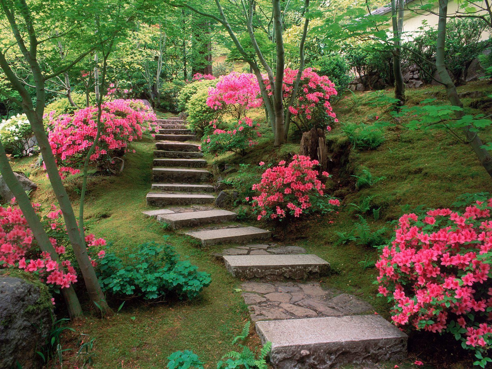 antiguos jardines tradiciones jardines japoneses - Jardines Japoneses