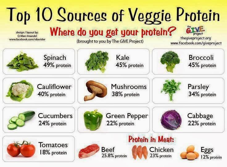 Aliments riches en protien faible en gras