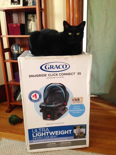 graco car seat, fat cat