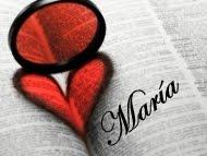 El reflejo de mis letras