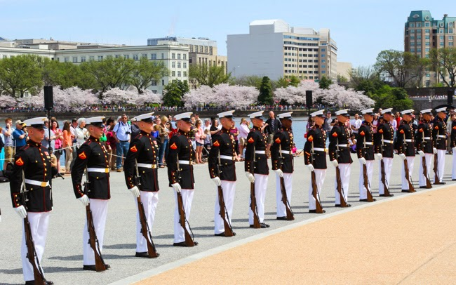Marines at Jefferson Memorial for Cherry Blossom Festival