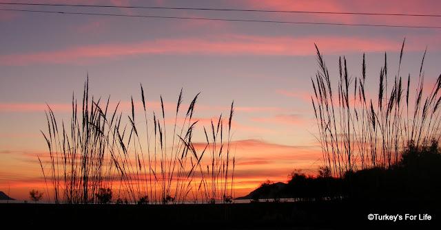 Koca Çalış Sunset, Fethiye