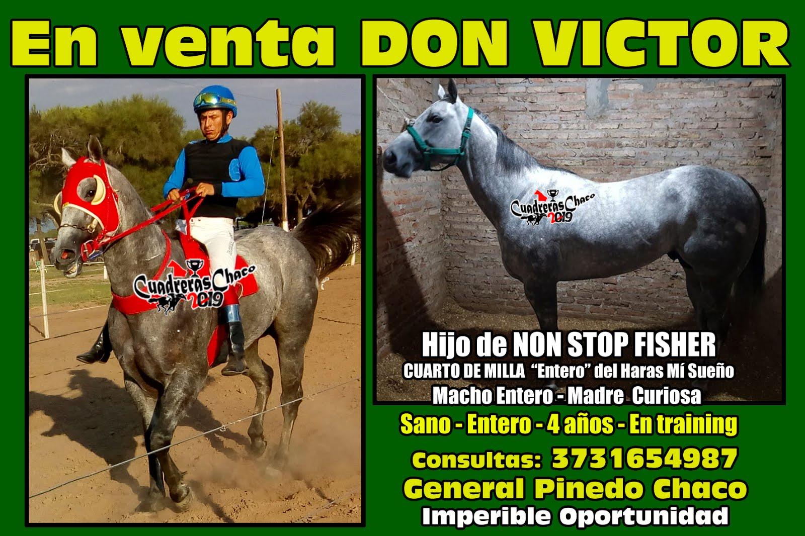 don victor en venta 28-1-19