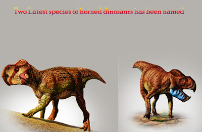 New Houred Dinosaurs