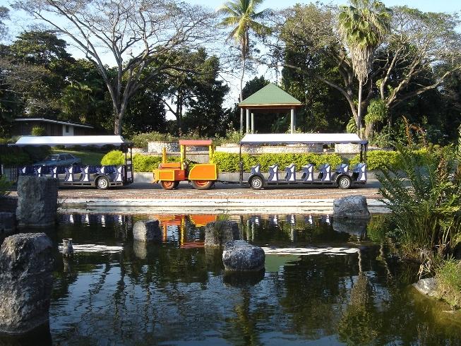 Jard n bot nico destaca logros del 2012 atmosfera digital for Jardin botanico nacional