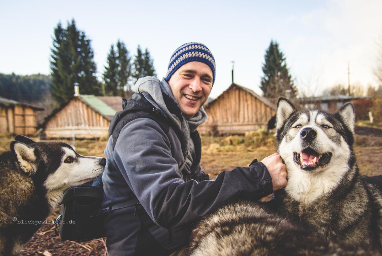 Der Mann zwischen zig Huskies