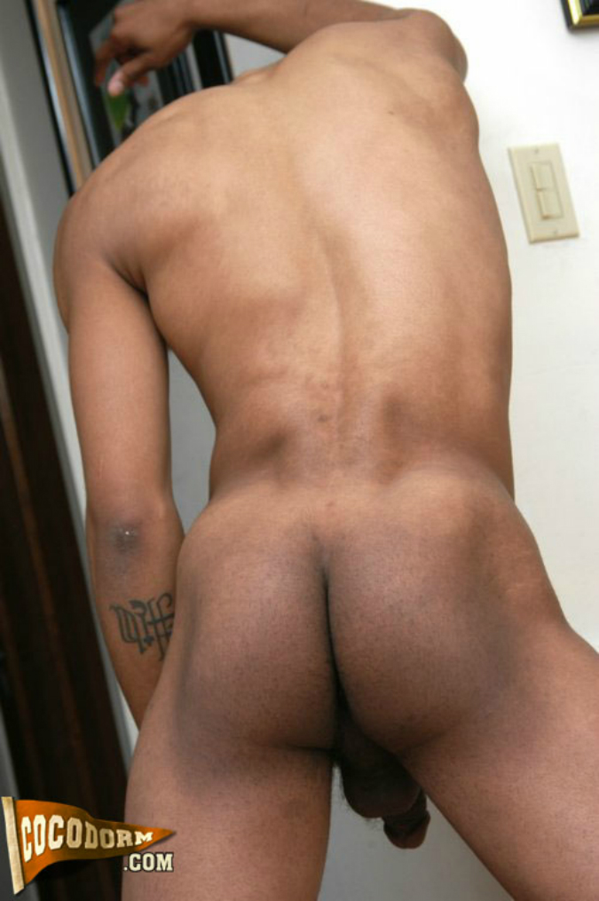 nude tan lined pussy