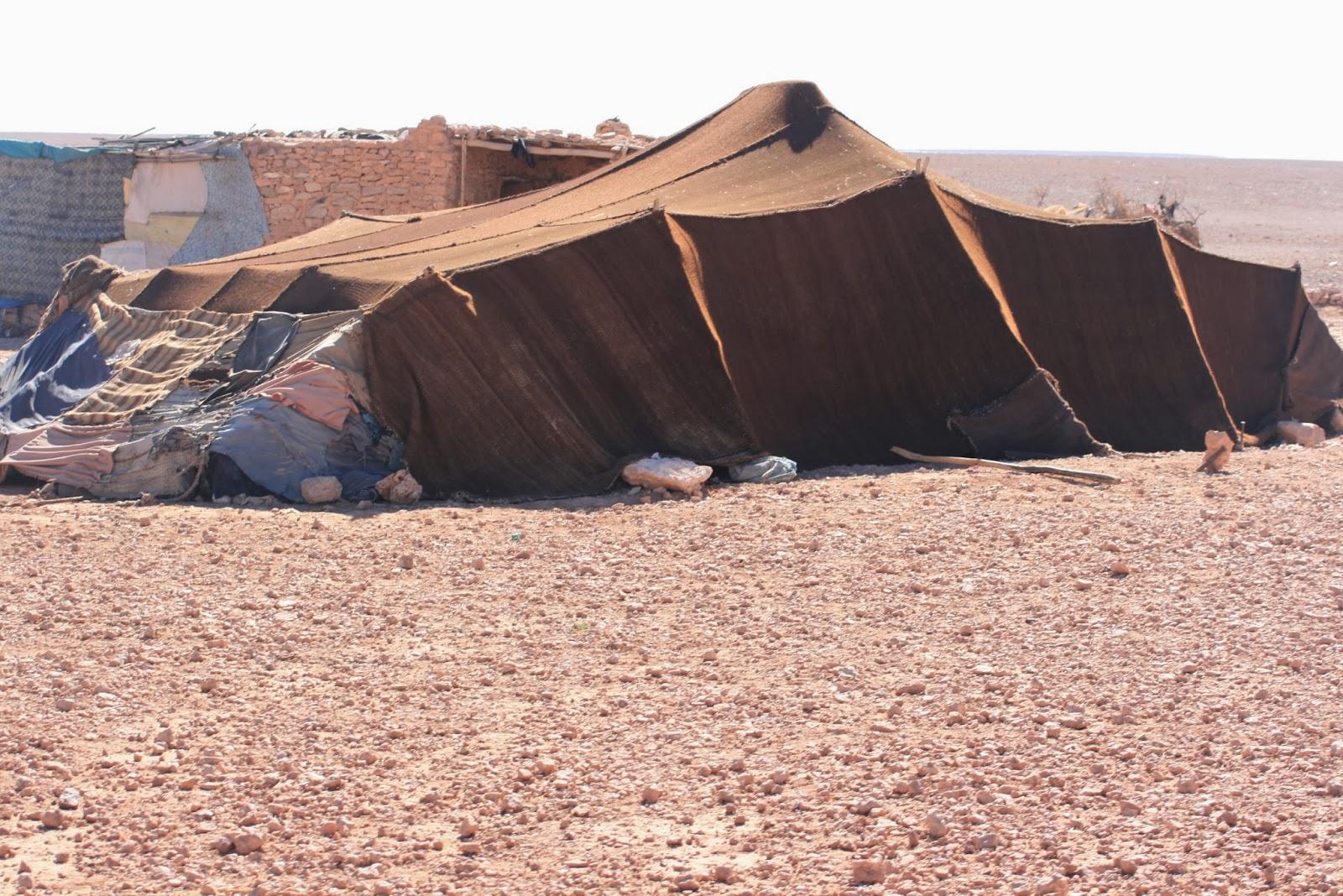 desierto de marruecos, bereber, viajes a marruecos, aventura