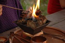 Terapia Homa es una ciencia de purificación de la atmósfera.