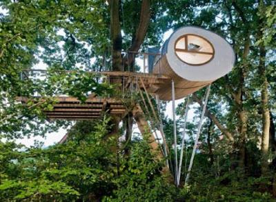 Casa del árbol espectacular.