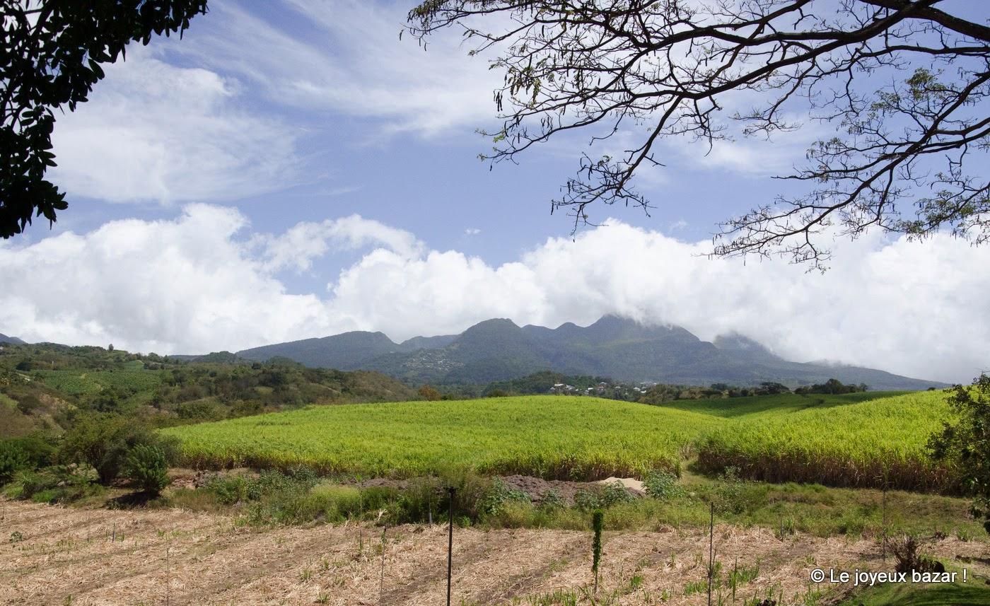 Guadeloupe - la Soufrière