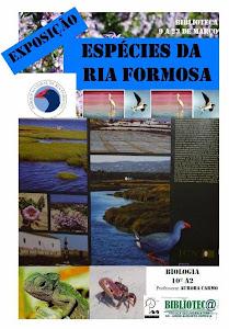 Espécies da Ria Formosa - 10º A2