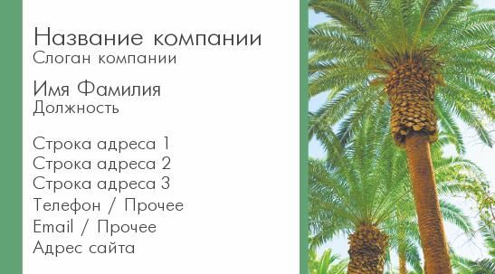 http://www.poleznosti-vsyakie.ru/2013/05/vizitka-turagenstva-palmy.html