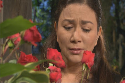 Dina Bonnevie, Mother of 13 Kids in MMK this November 24