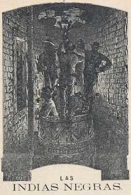 Las Indias Negras, Julio Verne