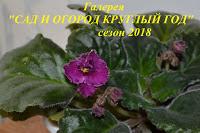 Сад и огород круглый год-2018