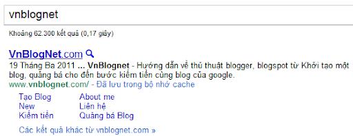 Vnblognet.com sitelink