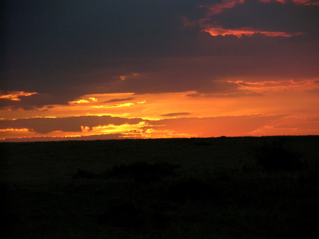Sun in the Serengeti