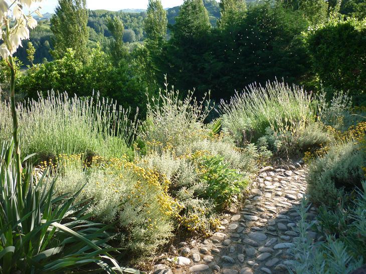 il giardino gaudente il giardino mediterraneo