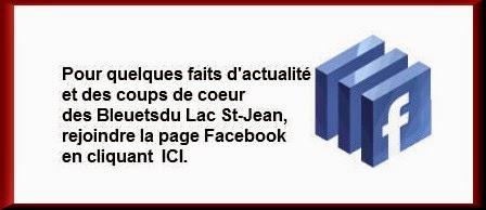 "https://www.facebook.com/LaPageDesBleuetsDuLacSaintJean?ref=hlX""*"