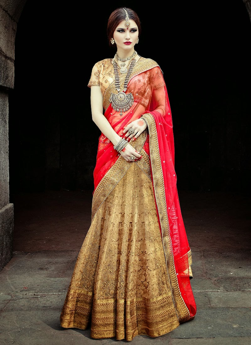 Lengha choli fashion dress 8