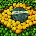 Emergentes criticam protecionismo do Brasil