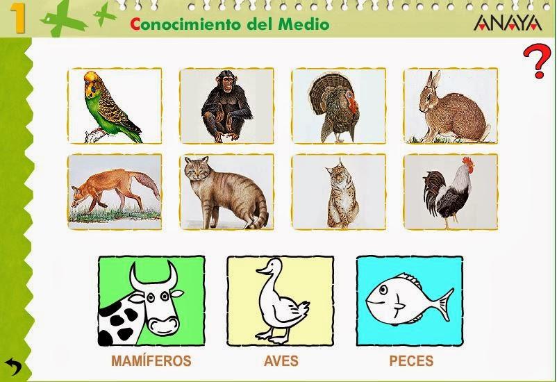 http://centros.edu.xunta.es/ceipcampolongo/intraweb/Recunchos/1/Recursos_Anaya/datos/03_cmedio/03_Recursos/actividades/2losAnimales/act7.htm