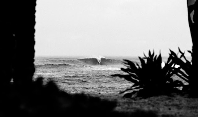 33 Vans World Cup of Sufing 2014 Lineup Foto ASP
