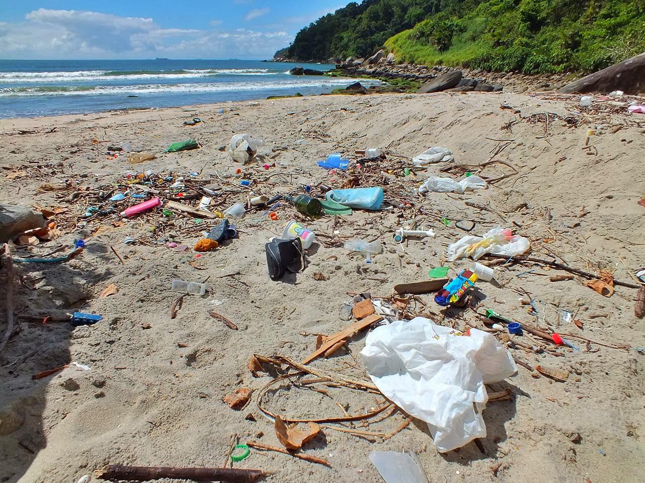 Praia de Itaquitanduva, em São Vicente. Grande parte do lixo descartado no estuário de Santos é transportado pela maré e por correntes marinhas. Foto: William Rodriguez Schepis / Instituto EcoFaxina
