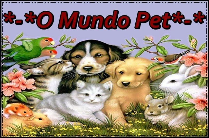 O Mundo Pet