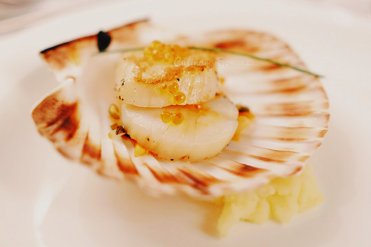 Scottish Scallop