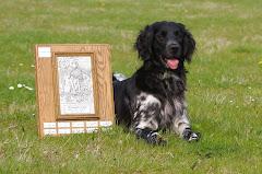 Winnaar Veldwerkbokaal 2008