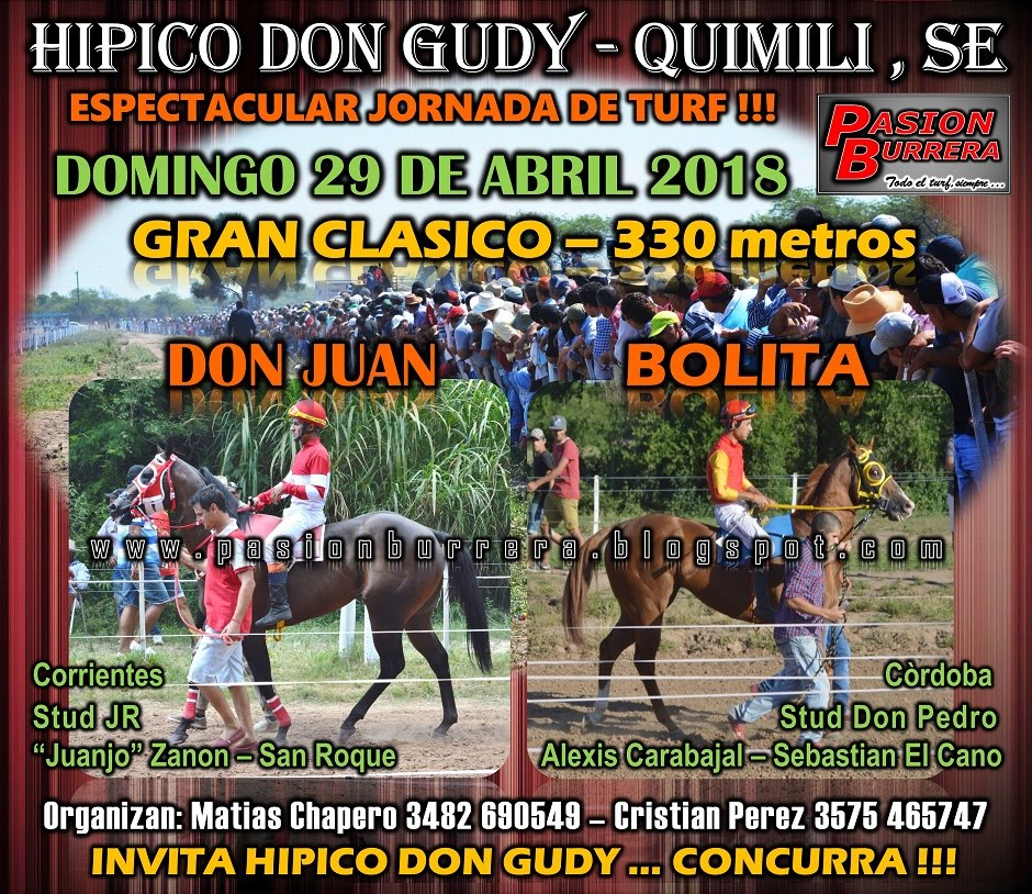 DON GUDY 29 - 330