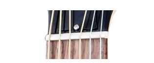 nut gitar akustik
