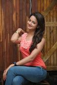 Cute Shanvi Glamorous Photos Gallery-thumbnail-12